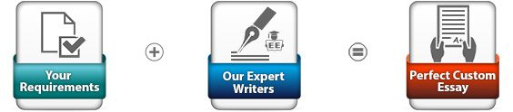 Custom essay experts
