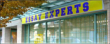 Essay experts inc